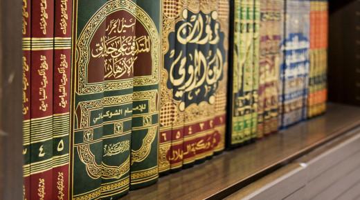 What is the Shia view on Sunni hadith books like 'Sahih Bukhari' & 'Sahih Muslim'?