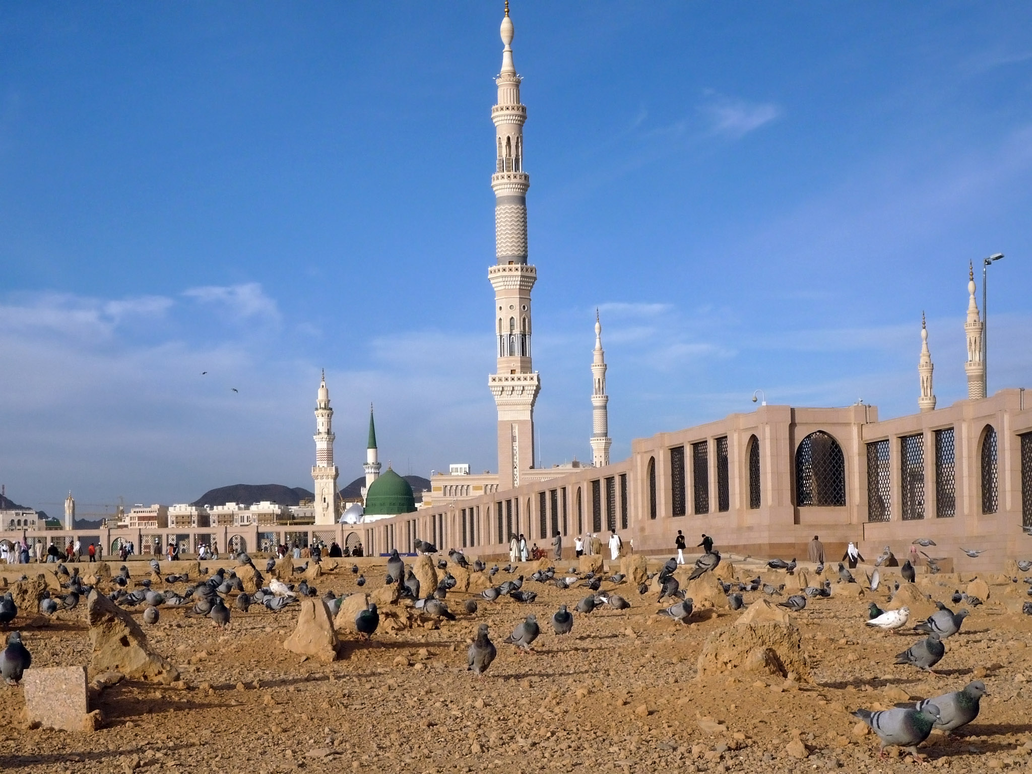 Did Imam Husayn leave behind a sick daughter named Fatima in Medina?