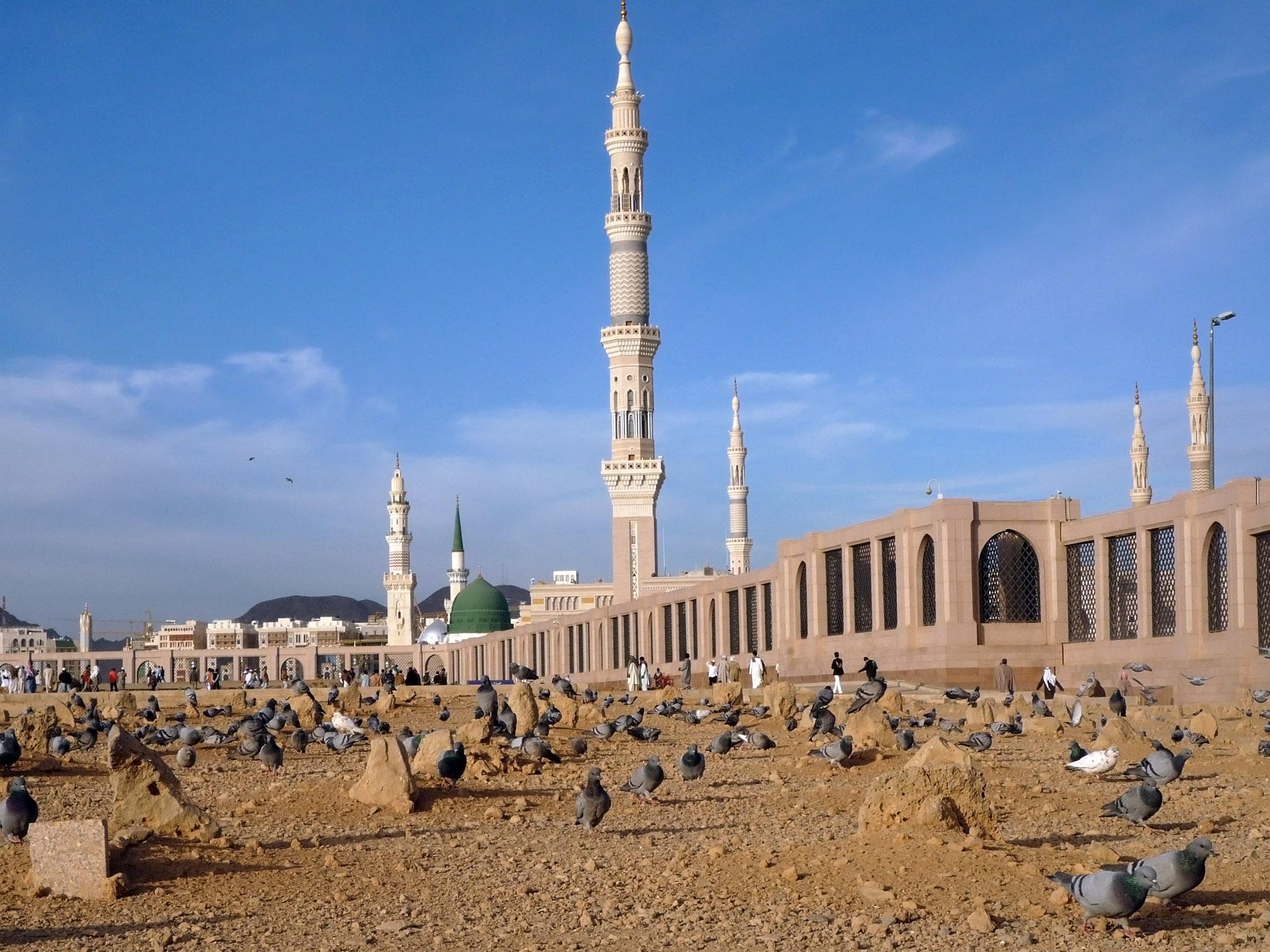 Did Imam Husayn leave behind a sick daughter named Fatima in Medina?